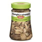 D'AMICO | Funghi di Pioppo (Gewone Oesterzwam) | 470g